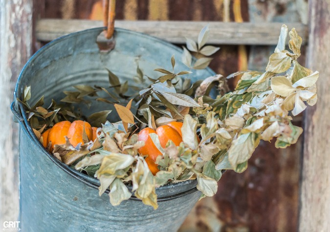 Fall Decorating on the porch. Sap bucket filled with dried flowers and mini pumpkins.