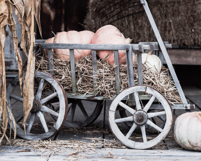 Fall Decorating Ideas. Goat Wagon ready for fall. Pumpkins & hay